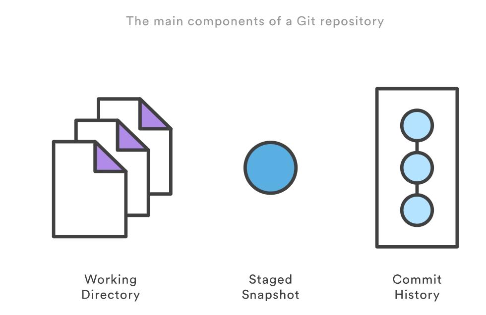 Git repo的主要组成